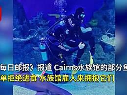 水族馆停业雇潜水员陪鱼玩 没有游客鱼都孤单阴郁了