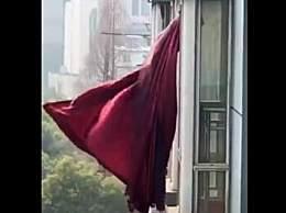 网红窗帘进博物馆
