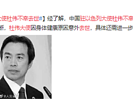驻以色列大使杜伟不幸去世