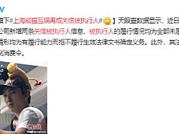 王思聪旗下上海熊猫互娱再成失信被执行人