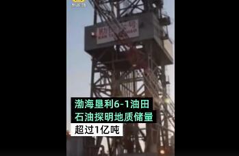 渤海一亿吨大油田