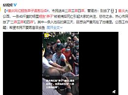 重庆网红鲤鱼莽子遇害后续