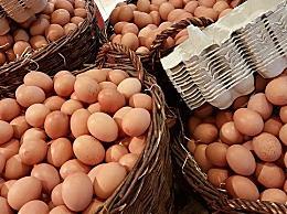 山东鸡蛋价格创年内新低 短期内震荡为主可能继续下降