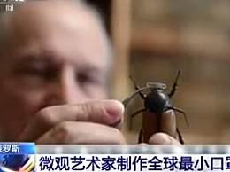 世界上最小的口罩 俄艺术家为昆虫做口罩