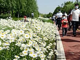 北京最高气温34℃