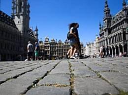 荷兰等欧洲四国将联合研制疫苗
