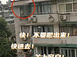 邻居隔空大吼劝退5楼窗台女童