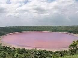 印度湖泊变粉红色 一夜之间由蓝绿色变成了粉红色