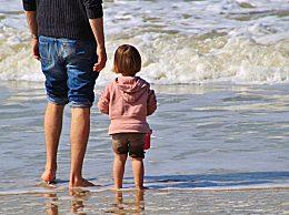 关于父亲节的作文800字5篇 2020父亲节主题作文精选