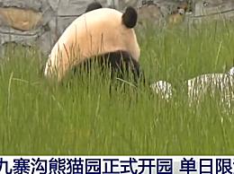 九寨沟熊猫园正式开园