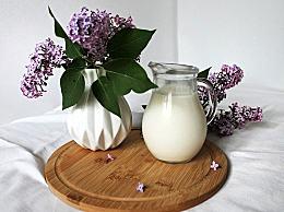 脱脂牛奶蛋白质含量高吗