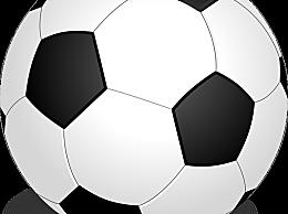 拜仁获德甲八连冠