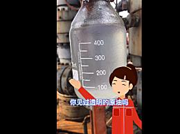 我国开采出无色透明原油 被称为天然汽油,可直接用作燃料