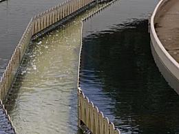 意大利在去年废水中检出新冠