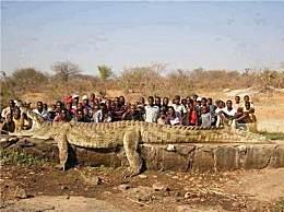 体型超一吨鳄鱼轰动全球!盘点世界上骇人听闻的庞然大物