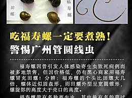 福寿螺和普通田螺有什么区别