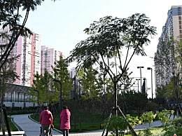 北京四层及以上新建住宅必须有电梯