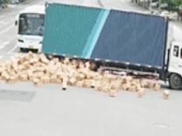 货车门没关好致千余箱茅台掉落