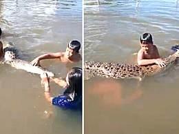 震惊!4名儿童水中与鳄鱼玩耍 画面让人不寒而栗