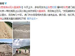 东莞海滩出现大量猪蹄 多部门已介入调查