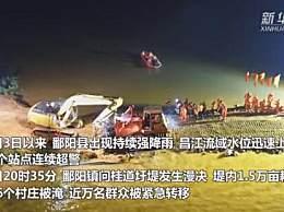 江西鄱阳问桂道圩决口合龙
