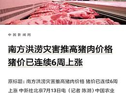 猪价已连续6周上涨