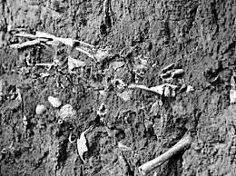 山西发现疑似长平之战尸骨坑