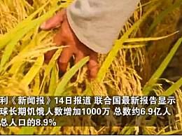 全球近6.9亿人处于饥饿状态