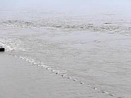 长江2020年第2号洪水