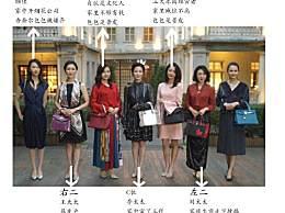 三十而已顾佳的包是什么牌子?其他太太的包包清一色爱马仕