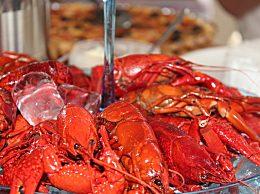 汛期勿自行捕捞野生小龙虾食用