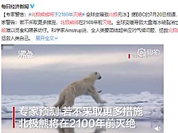 北极熊或将于2100年灭绝 全球变暖致北极无冰