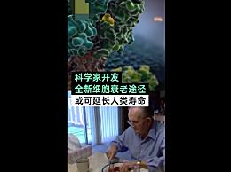 科学家发现操纵优化细胞衰老途径