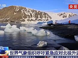 世界气象组织呼吁紧急应对北极高温