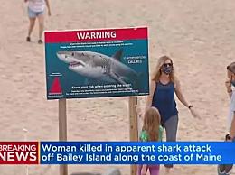 著名品牌女总裁被鲨鱼咬死