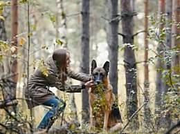 美国首例感染新冠的狗死亡