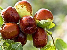 红枣的营养价值及功效与作用