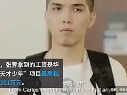 华为最高档天才少年年薪201万