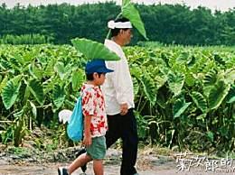 菊次郎的夏天确认引进 菊次郎的夏天国内什么时候上映