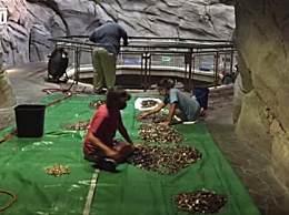 水族馆资金告急许愿池硬币救急
