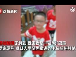 四川一精神病人电梯内砍死8岁男童