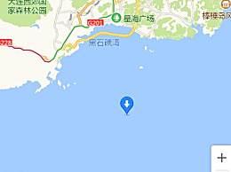 辽宁海域现大型海兽