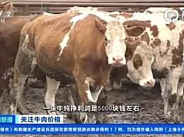 牛肉价格连续9周上涨