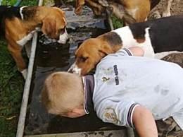 奇闻!英男孩认为自己是狗 用狗的方式喝水吃饭