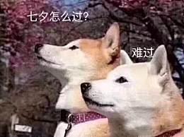 七夕情人节单身狗创意文案 2020七夕节单身狗幽默搞笑段子