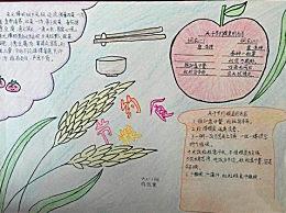 小学生简单漂亮节约粮食手抄报 节约粮食手抄报图片模板大全