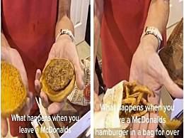 """麦当劳汉堡薯条24年不坏 专家:在某种程度上变成""""木乃伊"""""""
