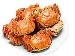 阳澄湖大闸蟹和普通螃蟹有什么区别?阳澄湖大闸蟹特征
