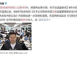 贾跃亭被终身禁入证券市场 债务处理小组表示绝不会逃避责任