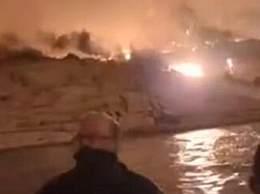 山火中美国民众跳湖保命山火